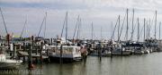 Naples Dock