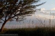 Moorings Beach