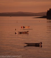 Bar Harbor 3