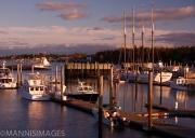 Bar Harbor 7