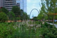 City Garden 4