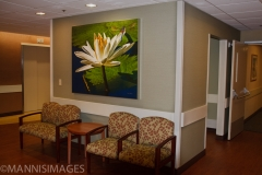 Missouri Baptist Hospital 5
