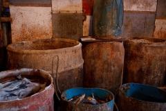 Bait Factory Barrels 4