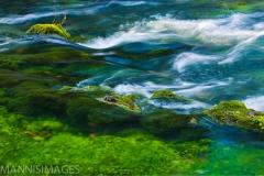 Blue Springs 3