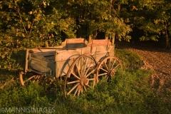 Old Wagon 1