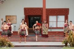 Maori Troupe