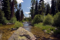 Teton Creek